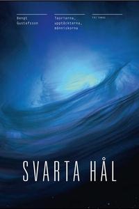 Svarta Hål : Teorierna, upptäckterna, människor