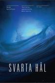 Svarta Hål : Teorierna, upptäckterna, människorna
