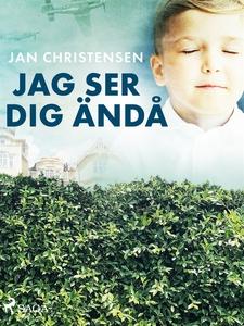 Jag ser dig ändå (e-bok) av Jan Christensen