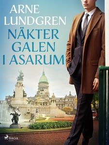 Näktergalen i Asarum (e-bok) av Arne Lundgren