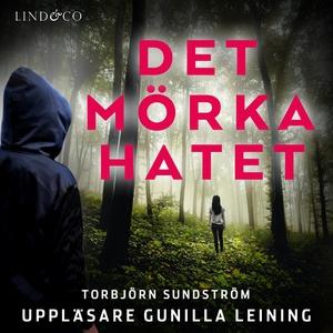 Det mörka hatet (ljudbok) av Torbjörn Sundström