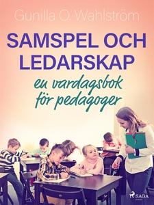 Samspel och ledarskap: en vardagsbok för pedago