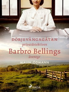 Dörjevångagåtan: privatdetektiven Barbro Bellin