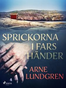 Sprickorna i fars händer (e-bok) av Arne Lundgr