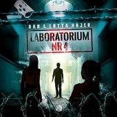 Laboratorium nr 4: Hemligt område