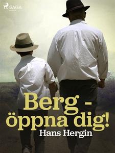 Berg - öppna dig! (e-bok) av Hans Hergin