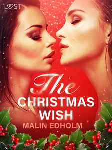 The Christmas Wish - Erotic Short Story (e-bok)