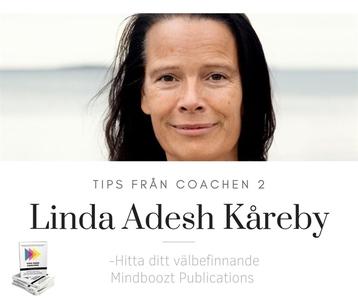 Hitta ditt välbefinnande (ljudbok) av Linda Ade