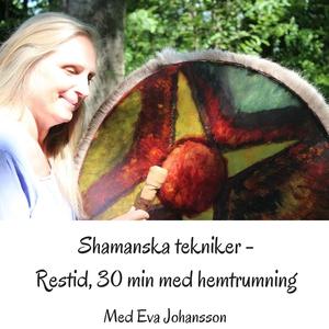 Shamanska tekniker del 7 (ljudbok) av Eva Johan