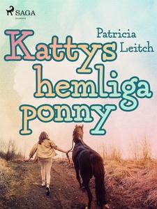 Kattys hemliga ponny (e-bok) av Patricia Leitch
