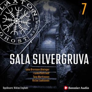 Sala silvergruva (ljudbok) av Lena Brorsson-Alm