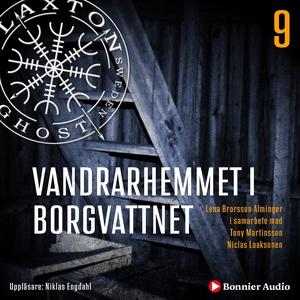 Vandrarhemmet i Borgvattnet (ljudbok) av Lena B