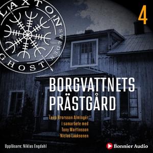 Borgvattnets prästgård (ljudbok) av Lena Brorss