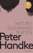Mitt år i Ingenmansbukten : En saga från de nya tiderna
