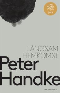 Långsam hemkomst (e-bok) av Peter Handke