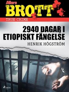 2940 dagar i etiopiskt fängelse (e-bok) av Henr