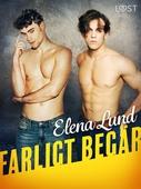 Farligt begär - erotisk novell