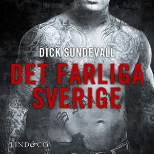 Det farliga Sverige (ljudbok) av Dick Sundevall