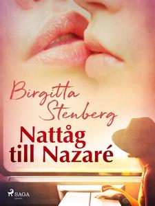 Nattåg till Nazaré (e-bok) av Birgitta Stenberg