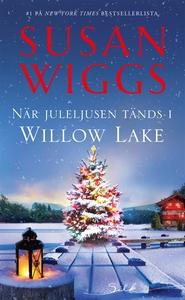 När juleljusen tänds i Willow Lake (e-bok) av S