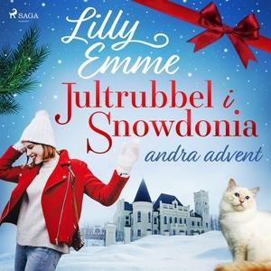 Jultrubbel i Snowdonia: andra advent (ljudbok)