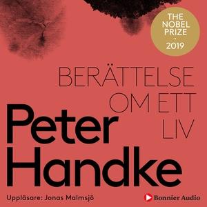 Berättelse om ett liv (ljudbok) av Peter Handke