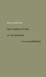 Om Som en gång varit äng av Ann Jäderlund (e-bo