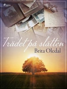 Trädet på slätten (e-bok) av Brita Oledal