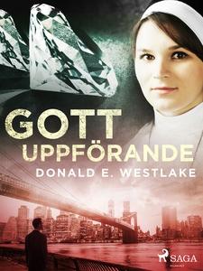 Gott uppförande (e-bok) av Donald E. Westlake