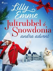 Jultrubbel i Snowdonia: andra advent (e-bok) av
