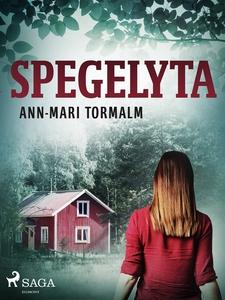 Spegelyta (e-bok) av Ann-Mari Tormalm