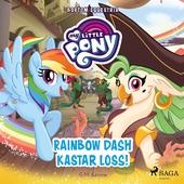 Bortom Equestria - Rainbow Dash kastar loss!
