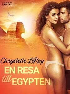 En resa till Egypten - erotisk novell (e-bok) a