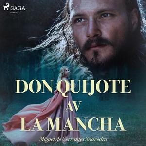 Don Quijote av la Mancha (ljudbok) av Miguel De