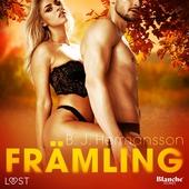 Främling - erotisk novell