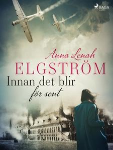 Innan det blir för sent (e-bok) av Anna Lenah E