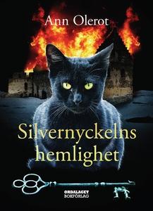 Silvernyckelns hemlighet (e-bok) av Ann Olerot
