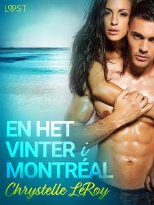 En het vinter i Montréal - erotisk novell (e-bo