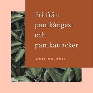 Fri från panikångest och panikattacker (ljudbok