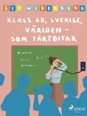 Klass 6 D, Sverige, Världen som tårtbitar