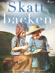 Skattbacken (e-bok) av Anna Kajsa Hallgard