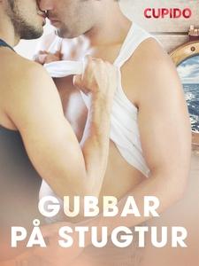 Gubbar på stugtur (e-bok) av Cupido