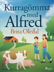 Kurragömma med Alfred (e-bok) av Brita Oledal