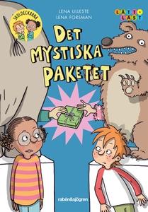 Det mystiska paketet (e-bok) av Lena Lilleste