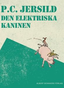 Den elektriska kaninen : En midsommarsaga (e-bo