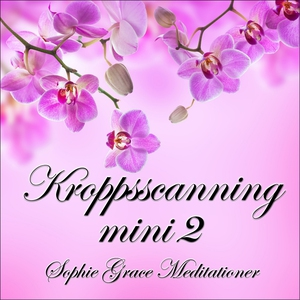 Kroppsscanning mini 2 (ljudbok) av Sophie Grace