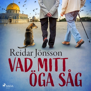 Vad mitt öga såg (ljudbok) av Reidar Jönsson