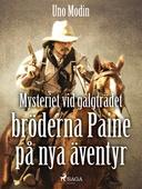 Mysteriet vid galgträdet :bröderna Paine på nya äventyr