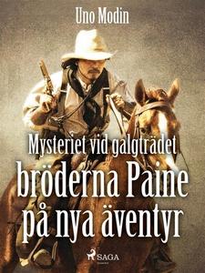 Mysteriet vid galgträdet :bröderna Paine på ny