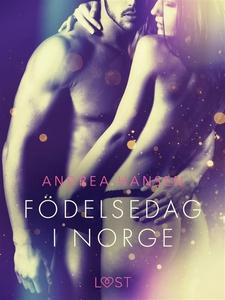 Födelsedag i Norge - erotisk novell (e-bok) av